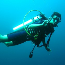 scuba-diver-261577_1280